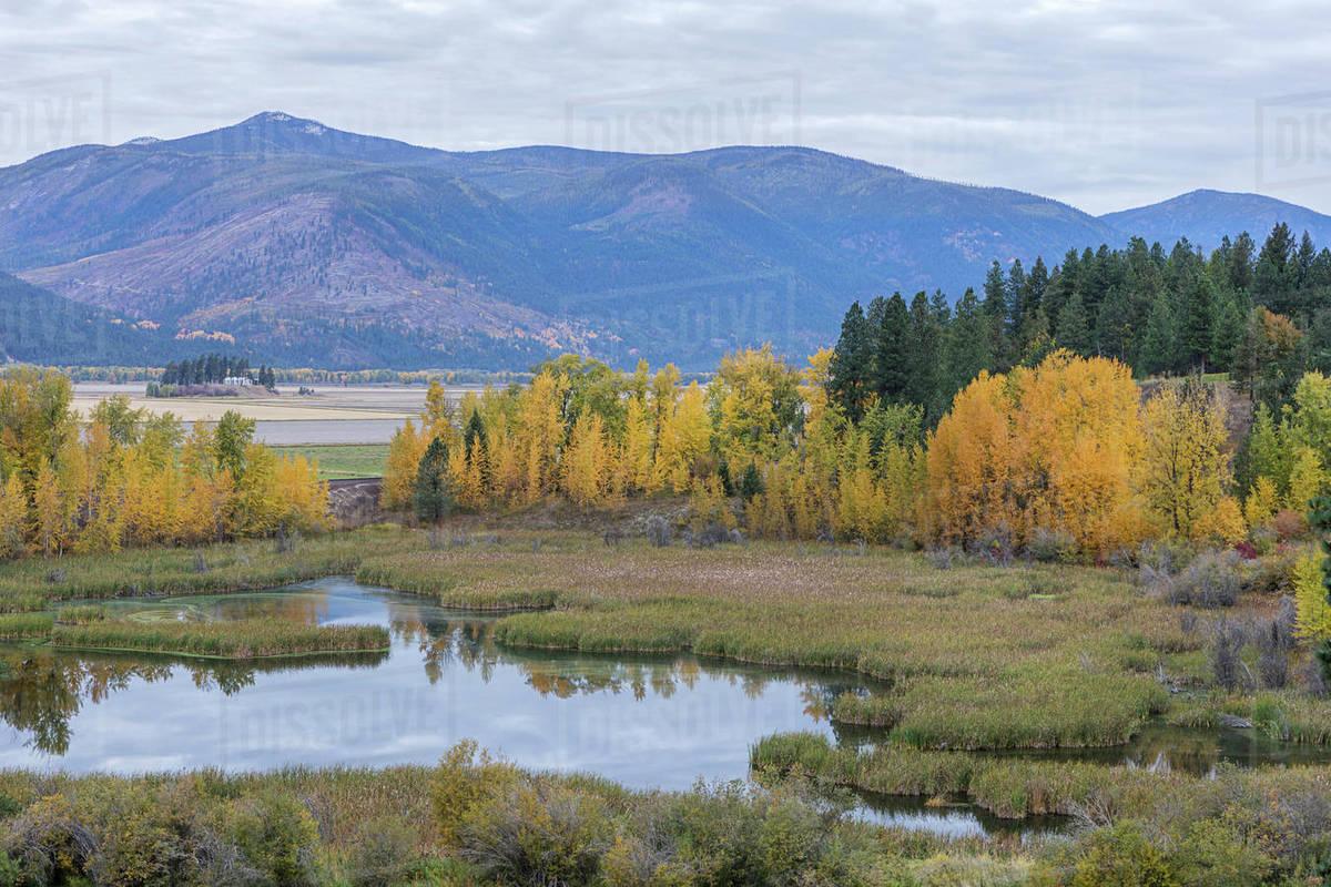 Fall landscape along Deep Creek Loop near Bonners Ferry, Idaho Royalty-free stock photo
