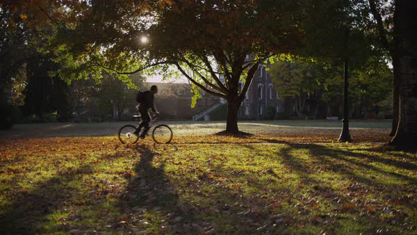 College student on campus riding bicycle Royalty-free stock video