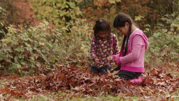 Two young girls in Fall look at pile of leaves Royalty-free stock video