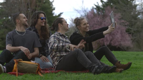Group of young people at park on blanket taking selfies together Royalty-free stock video