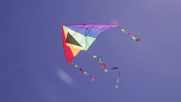 Kite flying in sky over beach Royalty-free stock video