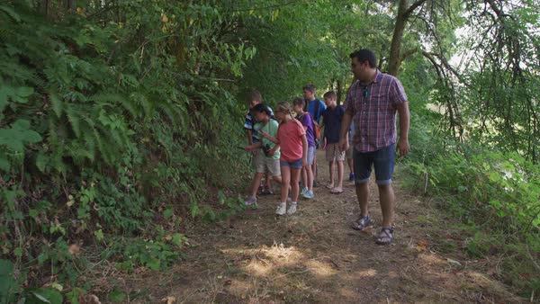 Kids at summer camp going on a nature hike Royalty-free stock video