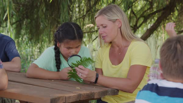 Kids at outdoor school looking at fern with teacher Royalty-free stock video