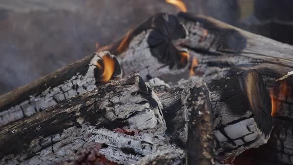 Closeup of campfire burning at summer camp Royalty-free stock video
