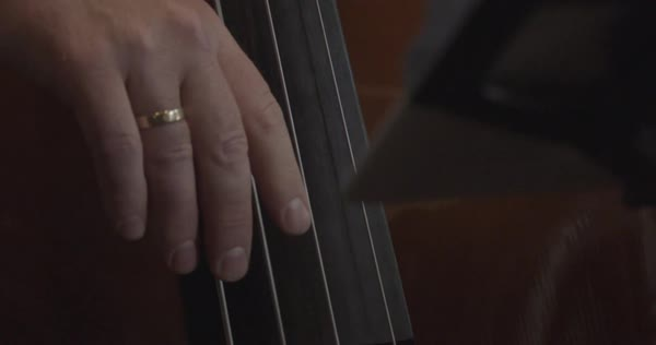 Handheld close-up shot of a man playing the double bass Royalty-free stock video