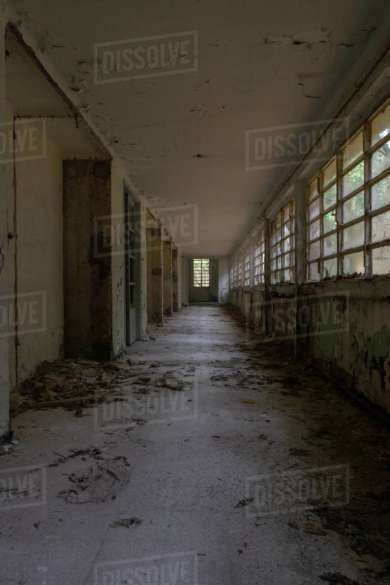 Old abandoned building house hallway with windows and broken glass and moss in the forest Royalty-free stock photo