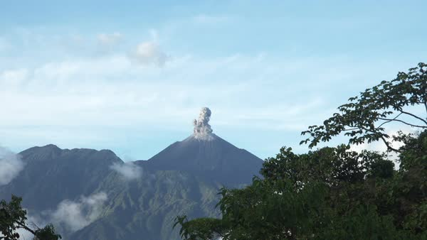 Volcan Reventador erupting, jungle covered rim of caldera in foreground, filmed from Alto Coca Rights-managed stock video