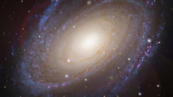 Spiral galaxy (M81), optical image. Rights-managed stock video