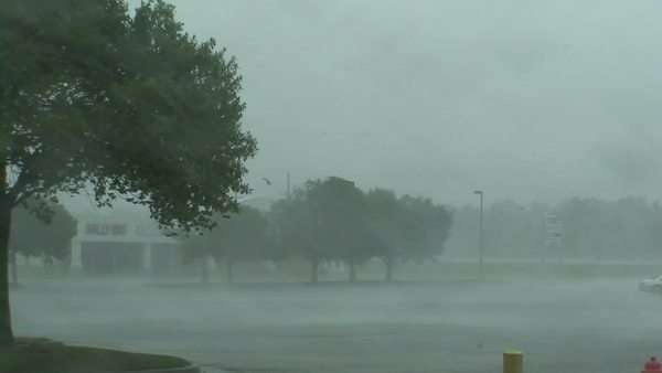 High Winds, Hurricane Gustav, Louisiana, Sept 2008 Rights-managed stock video