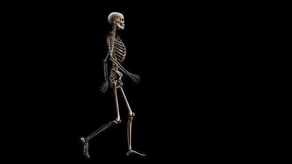 animation of a walking golden human skeleton on a black background, Skeleton