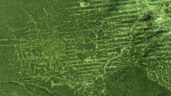 Deforestation, Brazil, 1975-2001. This series of Landsat satellite images shows the deforestation in the Rondonia region of Brazil over 26 years. Rights-managed stock video