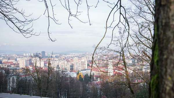 View of Ljubljana city from behind a tree. Wide jib shot view of city scape with tree in front. Royalty-free stock video