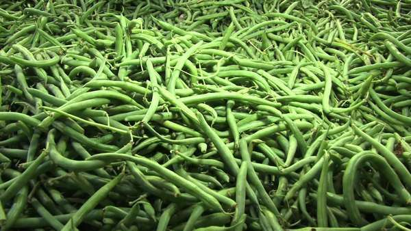 Close up of green beans in a fruit and vegetable store Rights-managed stock video