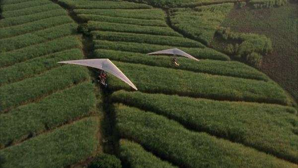 Air to air shot of two microlights flying over lush green sugar cane fields Rights-managed stock video