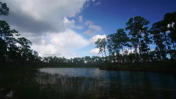 Time lapse of clouds over the Everglades. Royalty-free stock video