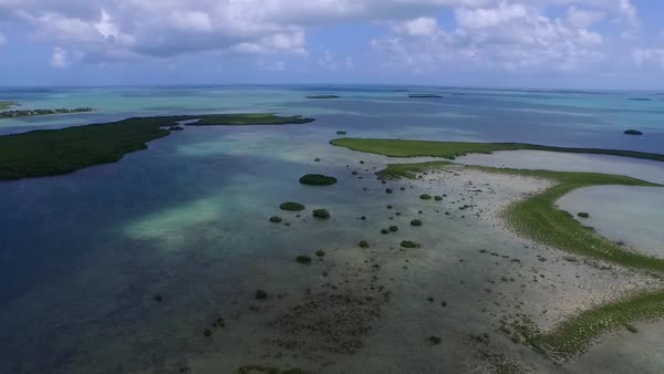 An aerial shot over a mangrove island in Florida. Royalty-free stock video