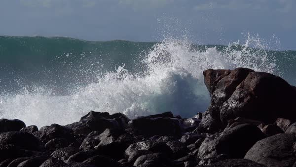 Blue waves roll into the coast of Hawaii and break on the shore. Royalty-free stock video