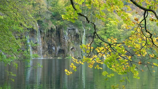 View through trees to waterfalls at Plitvice National Park in Croatia. Royalty-free stock video