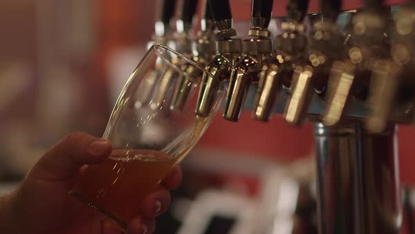 Bartender pouring craft beer from tap into pint glass at restaurant bar and brewery Royalty-free stock video