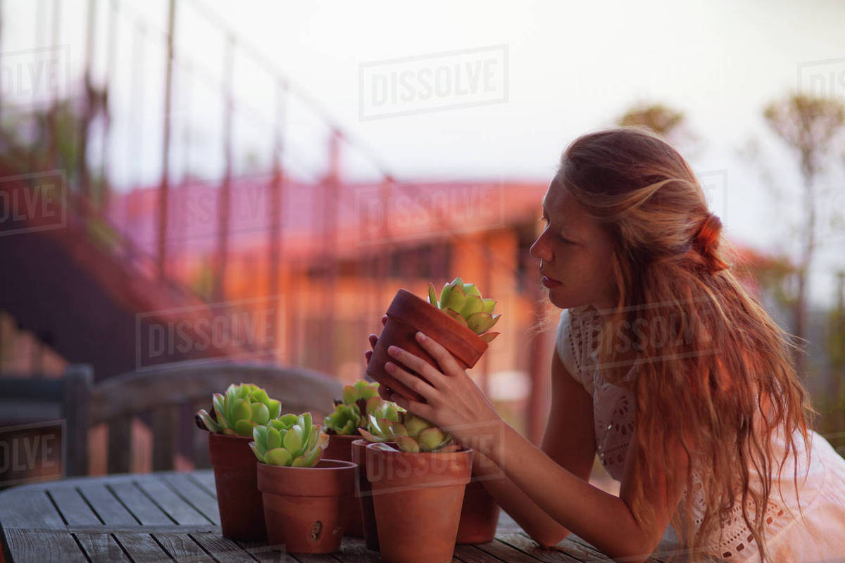 Young woman holding and looking at flowerpot while leaning on table Royalty-free stock photo