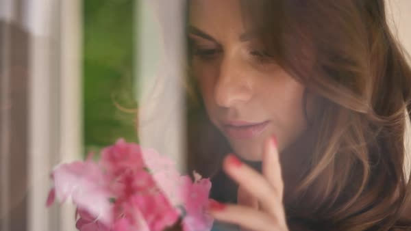 Close-up shot of woman smelling pink flowers Royalty-free stock video