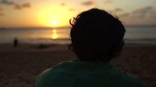 Hand-held shot of a man looking at sunset Royalty-free stock video