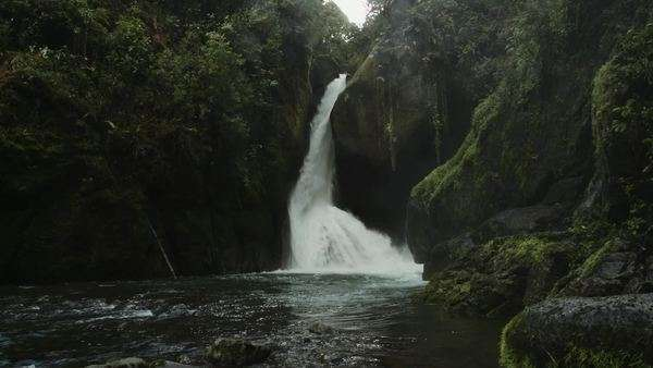 Large waterfall in rainforest Royalty-free stock video