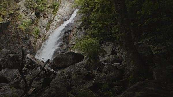 Camera moves through forest toward huge waterfall Royalty-free stock video