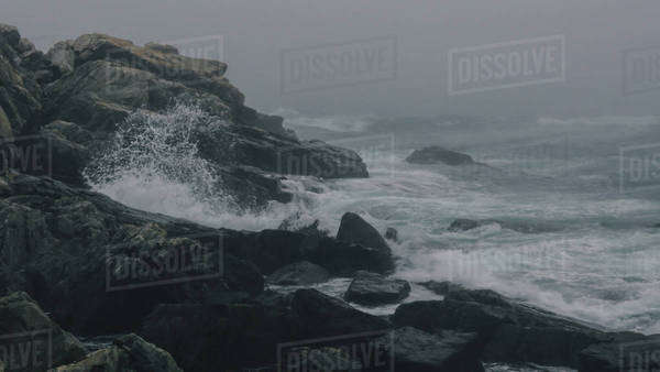 Large wave crashes on rock in fog Royalty-free stock photo