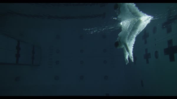 Slow motion underwater shot of woman in white dress diving into pool Royalty-free stock video