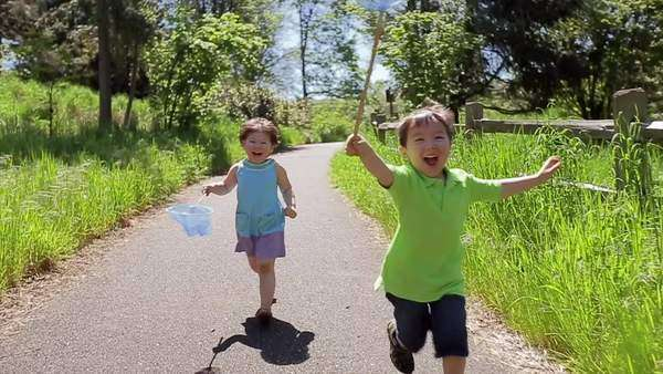 Excited little kids run with butterfly nets down park path toward camera Royalty-free stock video