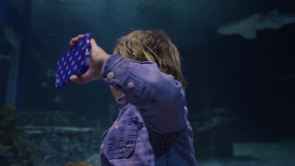 Little boy holds smart phone and takes video of himself and sharks/fish swimming in aquarium Royalty-free stock video