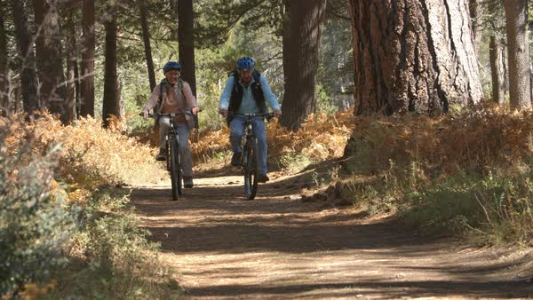 Senior couple cycling on forest trail, slow motion Royalty-free stock video