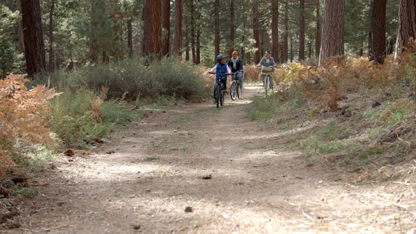 Couple and son cycling in a forest Royalty-free stock video