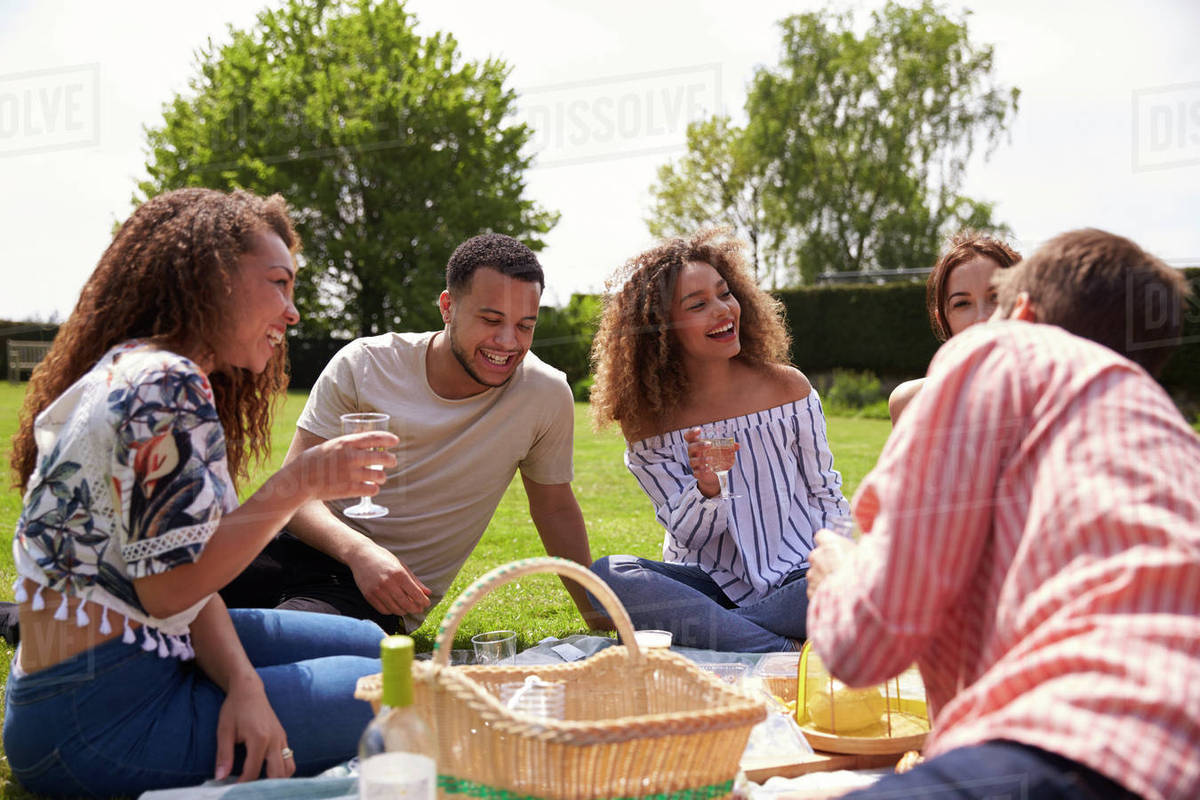 Young adult friends having a picnic drinking and talking ...
