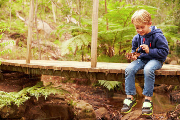 Toddler boy sitting alone on a wooden bridge in a forest Royalty-free stock photo