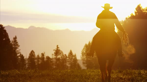 Silhouette of Cowboy Rider forest wilderness area Canada Royalty-free stock video