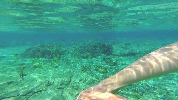 POV of a woman snorkeling in the crystal clear Hawaiian ocean. Royalty-free stock video