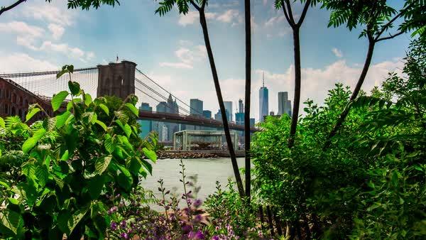 Brooklyn Bridge Park Summer Day Bay Panorama Time Lapse New York Usa