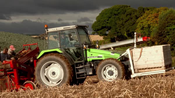 Wide shot of potato harvest in Northern Ireland Rights-managed stock video