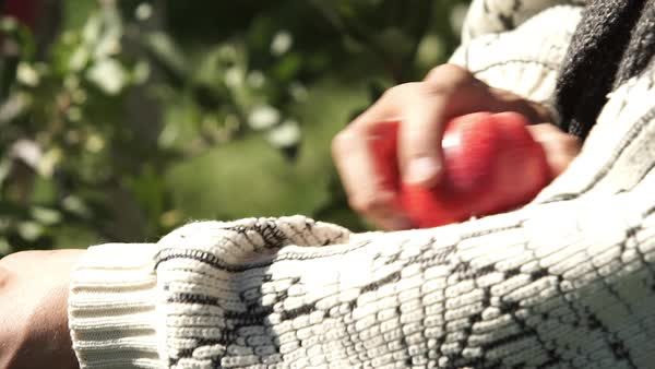 Close-up shot of a man wiping an apple with his sweater Royalty-free stock video