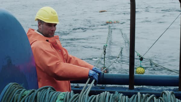 Fisherman works on commercial fishing ship that pulls trawl net Royalty-free stock video