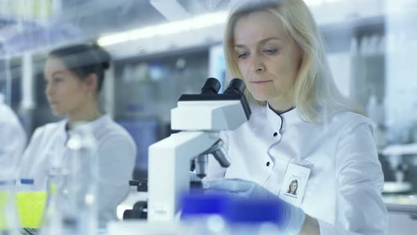 Female research scientists passes slided to her colleague who observes sample under microscope Royalty-free stock video