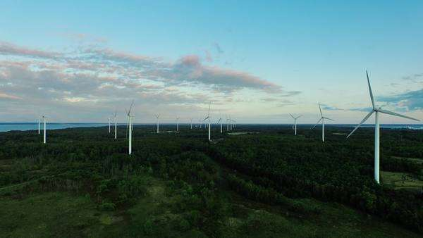 Aerial drone shot of wind turbines in the forest near the sea at sunset. Royalty-free stock video
