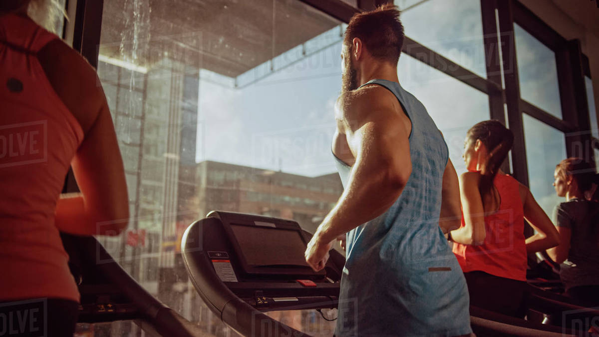 Group of Athletic People Running on Treadmills in a Row, Doing Fitness Exercise. Athletic and Muscular Women and Men Actively Training in the Modern Gym. Side View Golden Hour Sunny Light Royalty-free stock photo