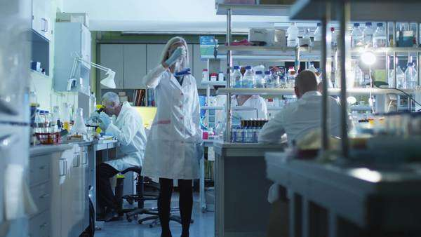 Focusing shot of people working in a modern laboratory Royalty-free stock video