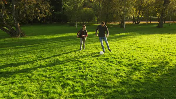 Father and son playing pass with a ball in the park Royalty-free stock video
