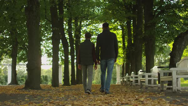 Father and son walking in the park, back view Royalty-free stock video