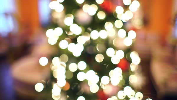 Out of focus shot of a Christmas tree Royalty-free stock video