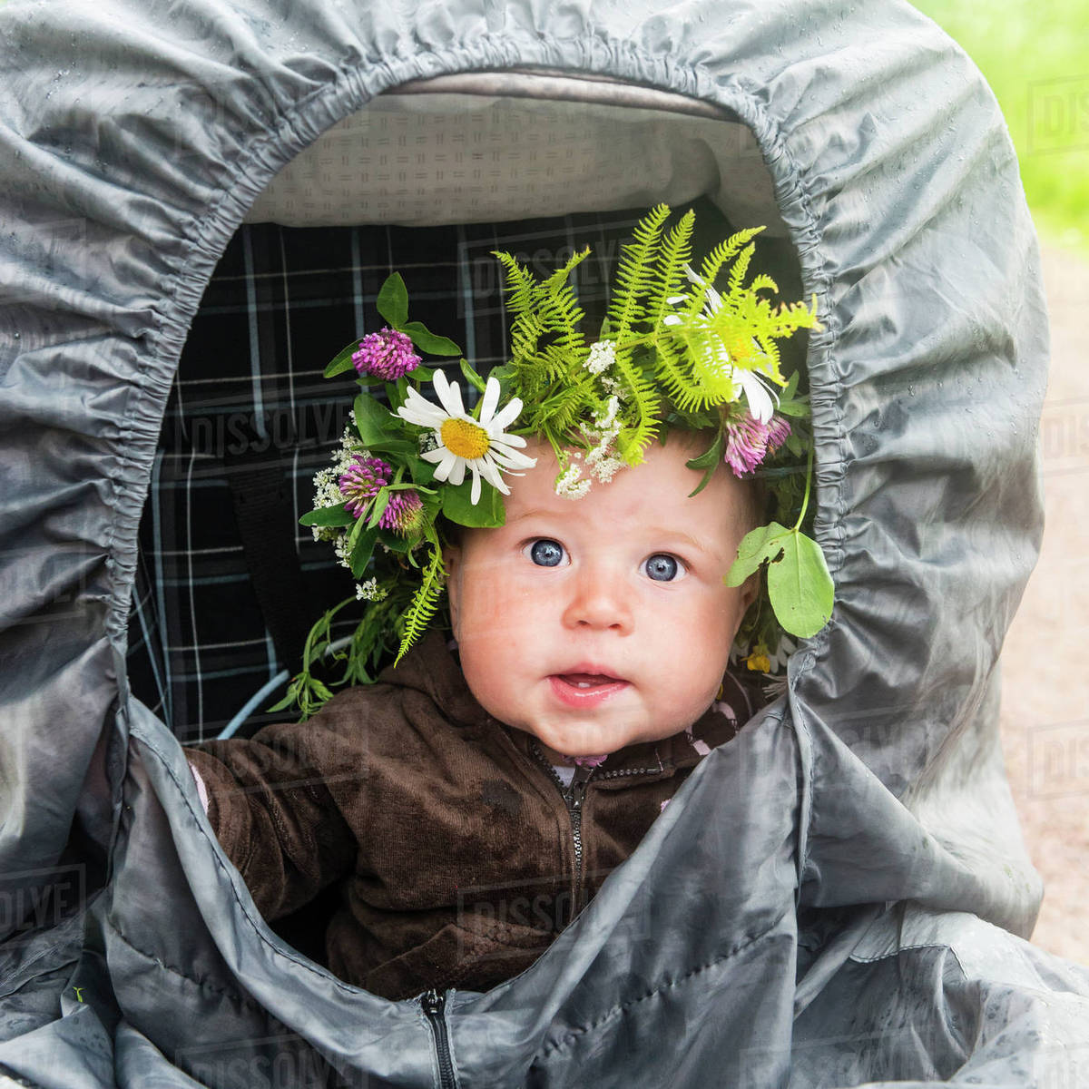 a71df0e491 Baby in buggy wearing flower wreath - Stock Photo - Dissolve